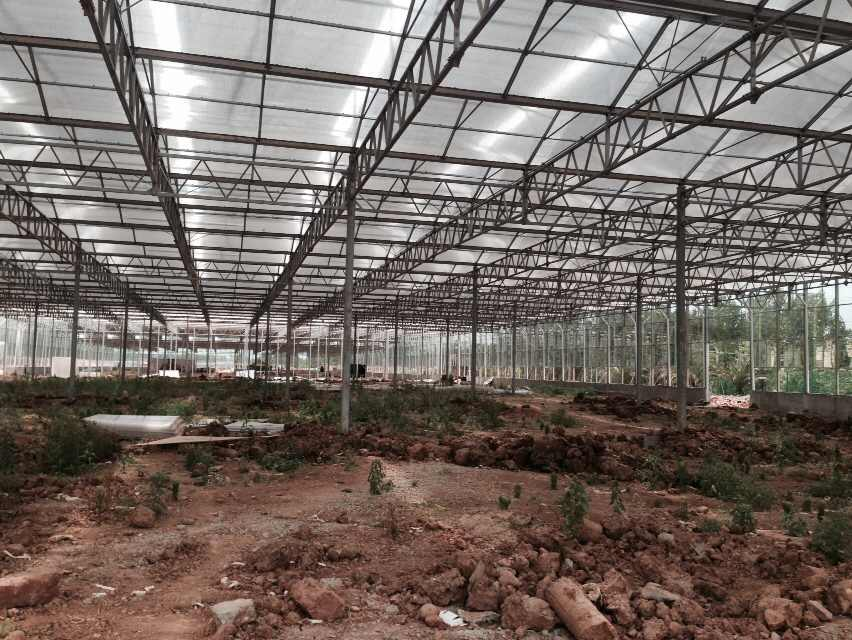 Chengdu ecological agriculture greenhouse